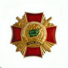 """Badge """"Veteran of the Afghan War"""""""