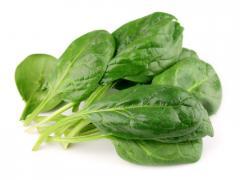 Свіжа зелень