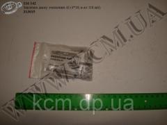 Заклепка диску зчеплення Al 313015 (4*9, ...