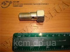 Болт штуцер гідромуфти 310095-П29 (М14*1,5*30), арт. 310095-П29