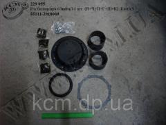 Р/к балансира 6 найм/14 шт. (В+Ч+П+Г+Ш+К) 55111-2918069 КамАЗ, арт. 55111-2918069