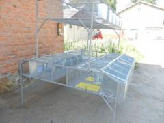 Клетка островная двухъярусная (маточная-12 секций, откормочных-6 секций), оборудование для выращивания кроликов, клетки для кроликов