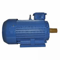 Электродвигатель АИР100L8 - 1,5кВт 750 об/мин Лапа