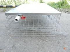Клетка для перепелов, клетки для кроликов, оборудование для выращивания кроликов
