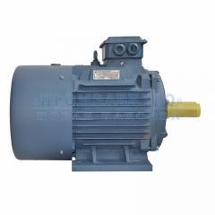 Электродвигатель АИР180S2 - 22кВт 3000 об/мин Лапа