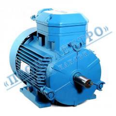 Электродвигатель 4ВР 100A2 - 4кВт 3000 об/мин Лапа