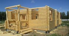 Domy z trámu