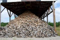 Buy poplar logs