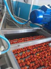 Line for processing tomatoes Rossi and Catelli