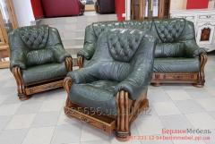 Кожаная мебель из Европы