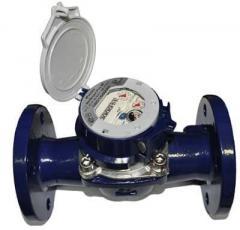 Турбинный счетчик воды Sensus Meistream Plus RF 65/50 с радиомодулем