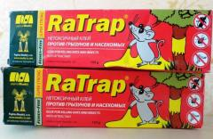 Glue from rodents - mice, rats of RaTrap.