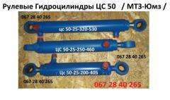ГЦ50.25.250.(460)