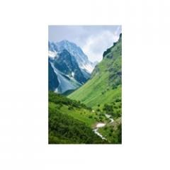 Газова колонка Dion JSD 10 скло з дисплеєм димохідна гори