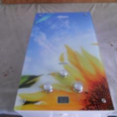 Газова колонка Dion JSD 10 скло з дисплеєм димохідна соняшник