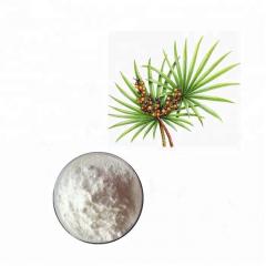 Экстракт карликовой пальмы сухой