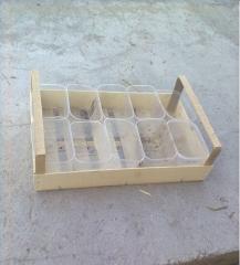 Box shponovy facilitated for strawberry