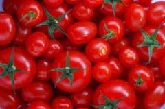 Помидоры, томаты свежие