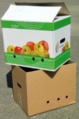 Box under apple - the telescope
