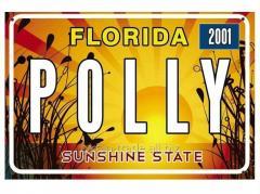 Американский номер Флорида (Изготовим за 1...