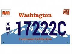 Американский номер Вашингтон (Изготовим за 1 час)