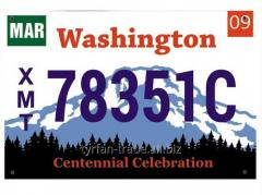 Американский декоративный номер Вашингтон (Изготовим за 1 час)