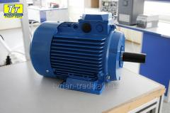 Электродвигатель АИРМУТ71А2 0, 75кВт/3000