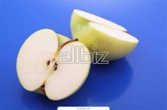 Яблоки свежие от производителя, продажа