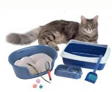 Fillers hygienic for cat's toilets from the