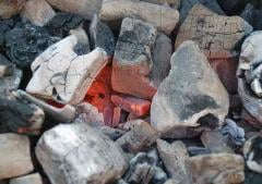 Birch charcoal