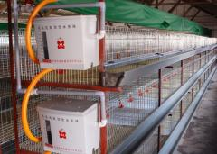 Cage complexes for poultry farming