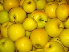 Яблоки опт, Яблоки голден, айдаред