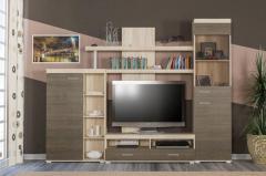 Гостинная Тумба под телевизор с полками и шкафом