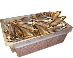 Sun-dried fish