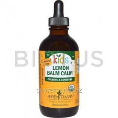 Успокаивающий сироп для детей с мелиссой (Lemon Balm Calm), Herb Pharm, 120 мл