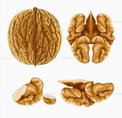 Орехи грецкие без скорлупы