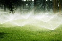 Management of watering of system from the Clever
