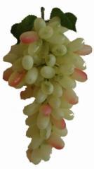 Model grapes, models of fruit and vegetables Kiev