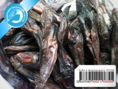 Bull-calves dried, box of 5 kg
