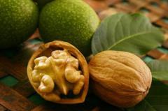 Oil of a walnut (Walnut oil)