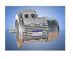 Асинхронные электродвигатели DriveMotors