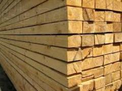 Coniferous to buy bar, bar from tree conifer, to