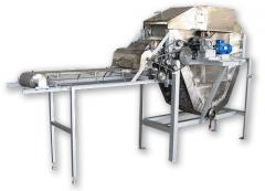 Complex of production of chips from dry Sh12-KFCh