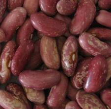 Haricot, haricot seeds, long white beans, round white beans, haricot of grades of Maslyank, Sugar, Ukraine, Export.