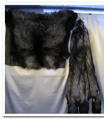 Skin of the silver fox, fur, perforation