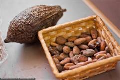 To buy cocoa beans, Cocoa beans, Cocoa beans