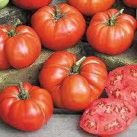 Семена помидоров Ponderosa