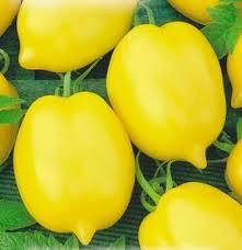 Семена помидоров Чудо света