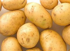 Potatoes early.
