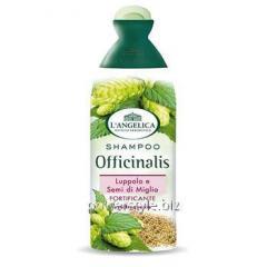 Укрепляющий шампунь для всех типов волос Langelica Officinalis 250 мл